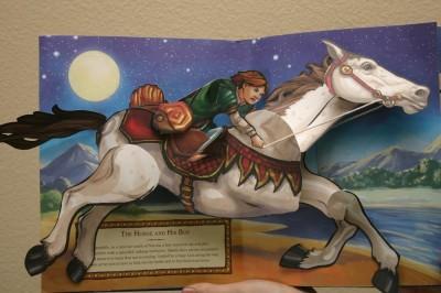 Shasta riding Bree