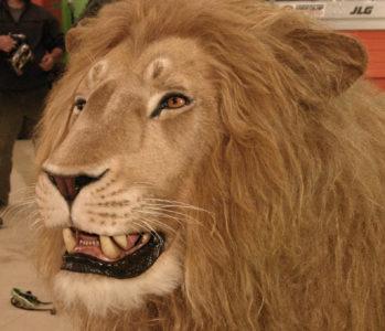 Anamatronic lion head