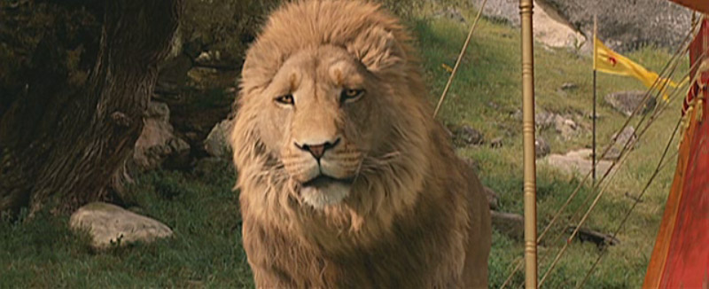 new narnia trailer available narniaweb