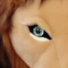 lion stuffed eye thumb